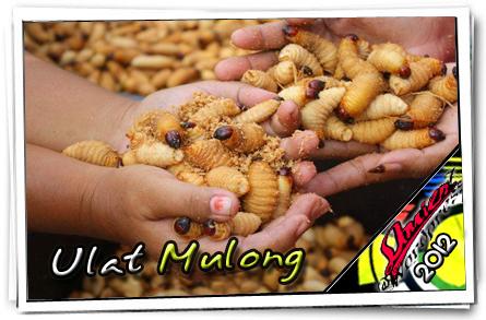 mulong