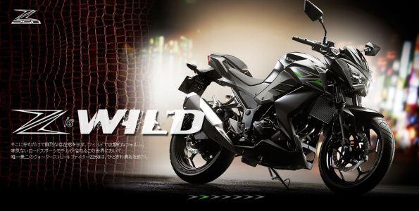New-Kawasaki-Z250-001